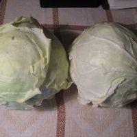 Λάχανο τουρσί σε δύο εκδοχές